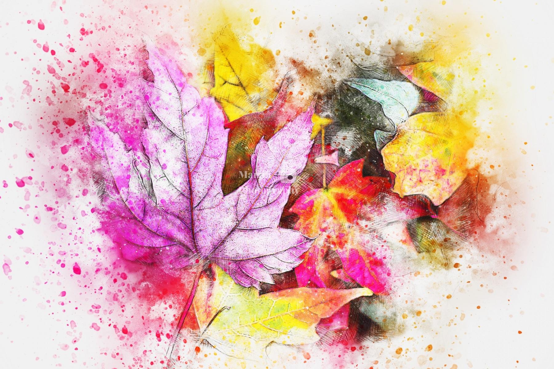 leaves-2630470_1920